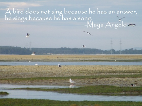 sing your song/insight from a woman's heart