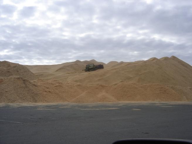 Bluff Harbour.sawdust2009