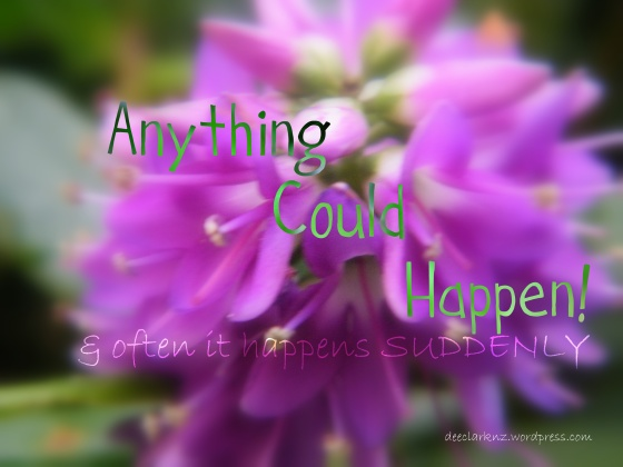 anything could happen/insight from a woman's heart