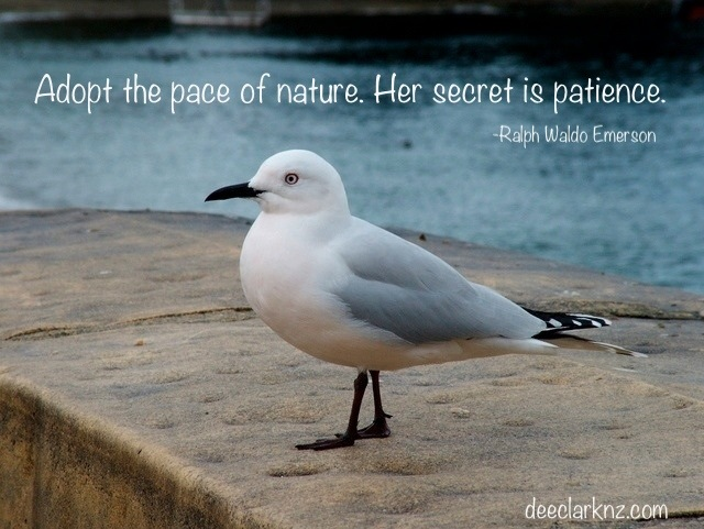Nature Has A Secret