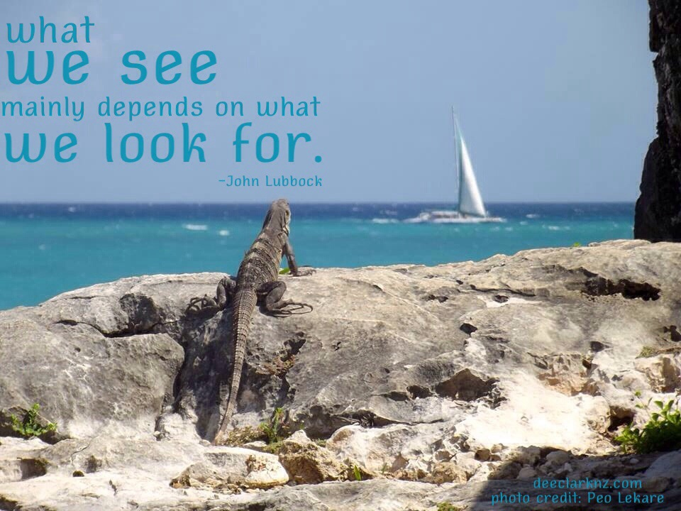 What We See Depends On What We LookFor